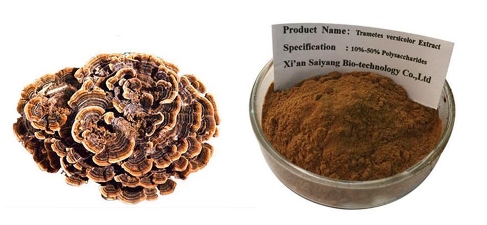 Экстракт Coriolus Versicolor - полисахарид Порошок 1 кг