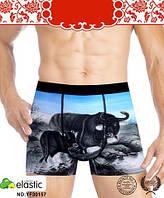 "Трусы мужские ""Veenice"" год быка(XL-4XL), фото 1"