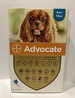 Advocate (Адвокат) капли для собак весом  4-10 кг за пипетку