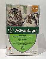 Bayer Advantage 40 - капли Байер Адвантейдж от блох для кроликов, котят и кошек до 4 кг за 1 (пипетку)