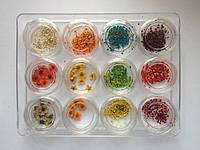 Сухоцветы для дизайна ногтей -12