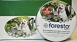 Bayer Foresto Байер Форесто- ошейник против блох и клещей 38 см, фото 2