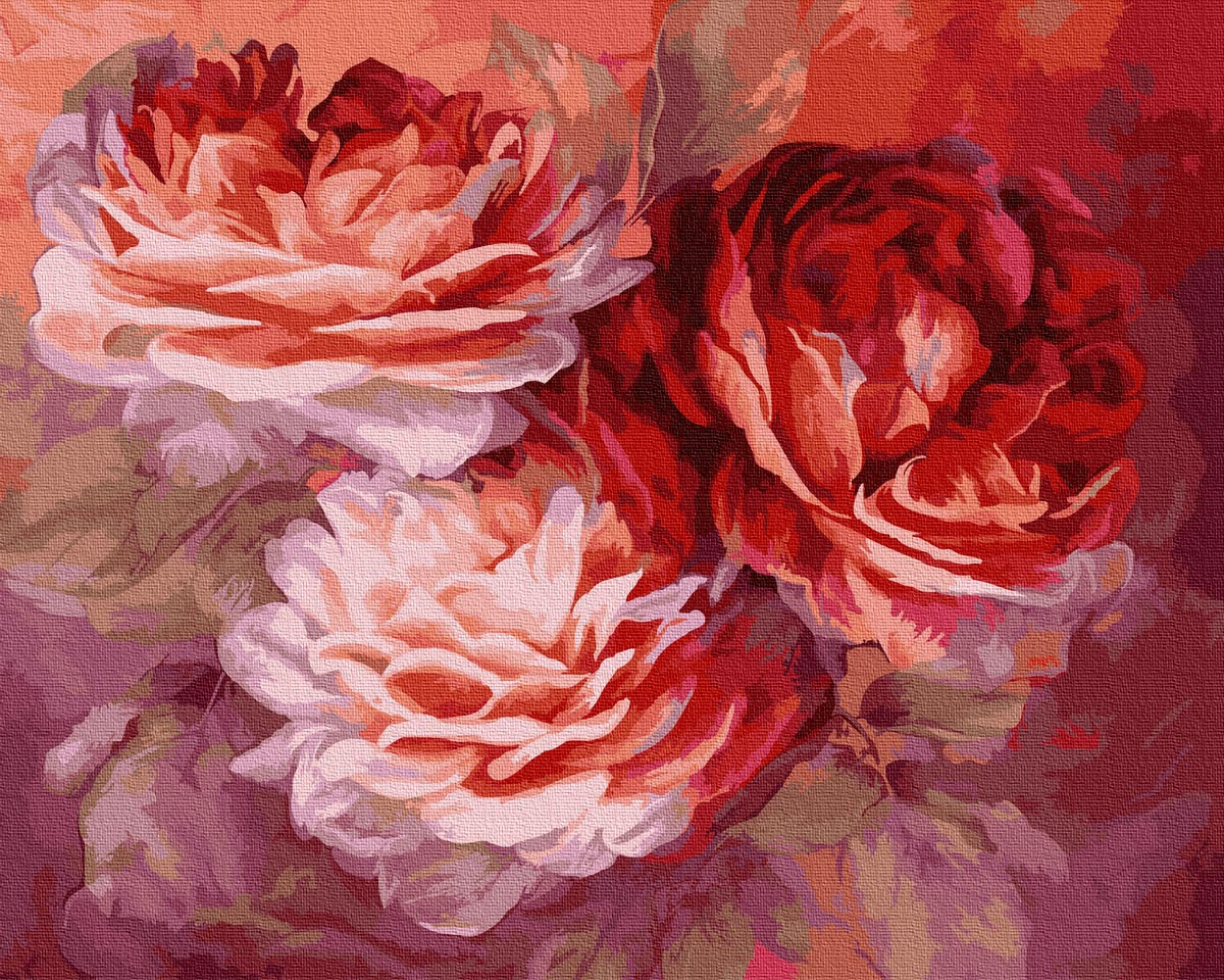 Картина по Номерам Красные розы 40х50см RainbowArt