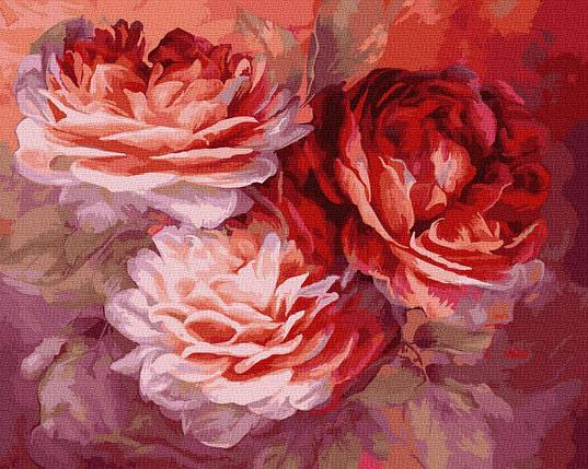Картина по Номерам Красные розы 40х50см RainbowArt, фото 2