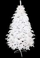 Лита ялинка Коваливская біла розміри від 1,5 до 2,5 м, фото 1