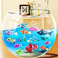 Robofish - Інтерактивна рибка