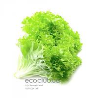 Салат натуральный 1кг