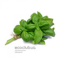Базилик  зеленый Эко