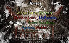 Поступление: Alpha Bottle, BioTech, Blender Bottle, MyProtein, Nutrex, Scitec Nutrition, Syntrax, Weider.