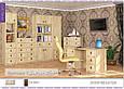 Пенал 1Д 2Ш Валенсия (Мебель Сервис), фото 3