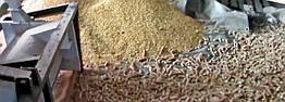 Лущильник початков кукурузы ЛП-2