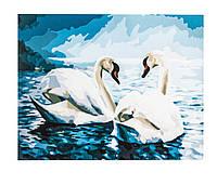 Картина по номерам Лебеди, размер 40х50