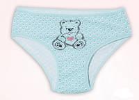 """Трусики  для девочки """"Тедди"""", размер 2/3"""