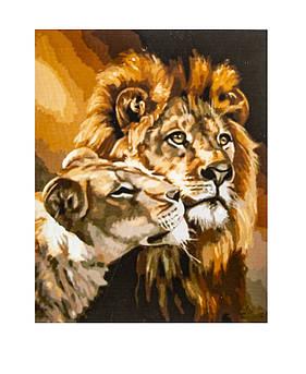 Картина по номерам Лев и Львица, размер 40х50