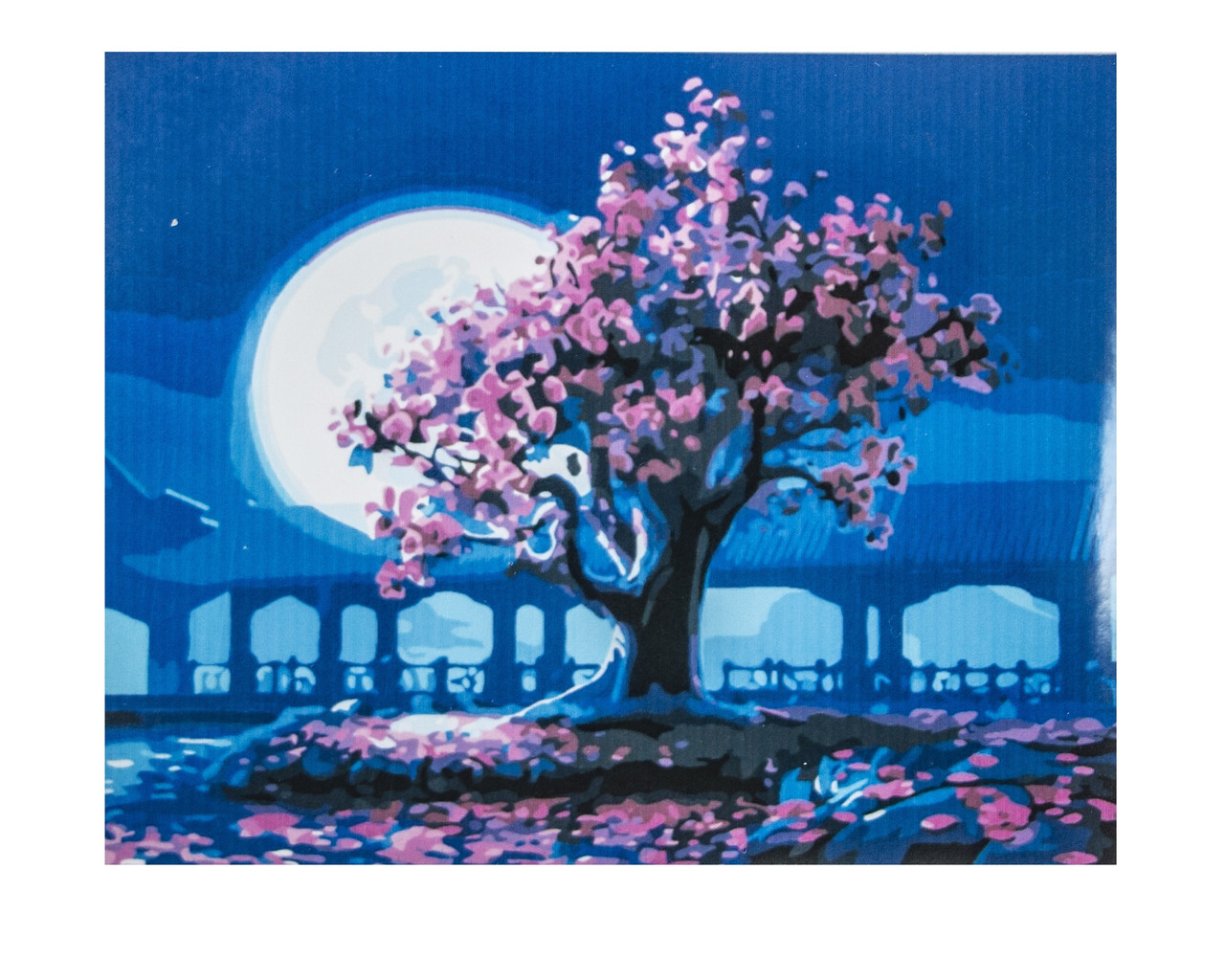 Картина по номерам Сакура, размер 40х50