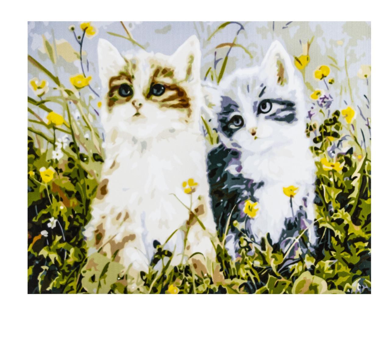 Картина по номерам Котята, размер 40х50