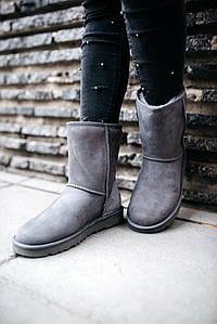 Женские зимние ботинки UGG Short Ii Grey (мех)