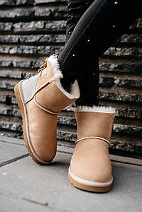 Женские зимние ботинки UGG W Mini Bailey Bow Ii (мех)