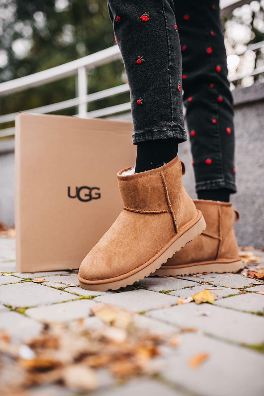 Женские зимние ботинки UGG W Classic Mini Chestnut (мех)