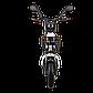 Электрический мопед  R1 RACING  Athena 500W/48V/20AH(MG) (белый), фото 2