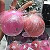 Новогодние шары на елку,  с пуховым декором  2 цвета розовый, малина
