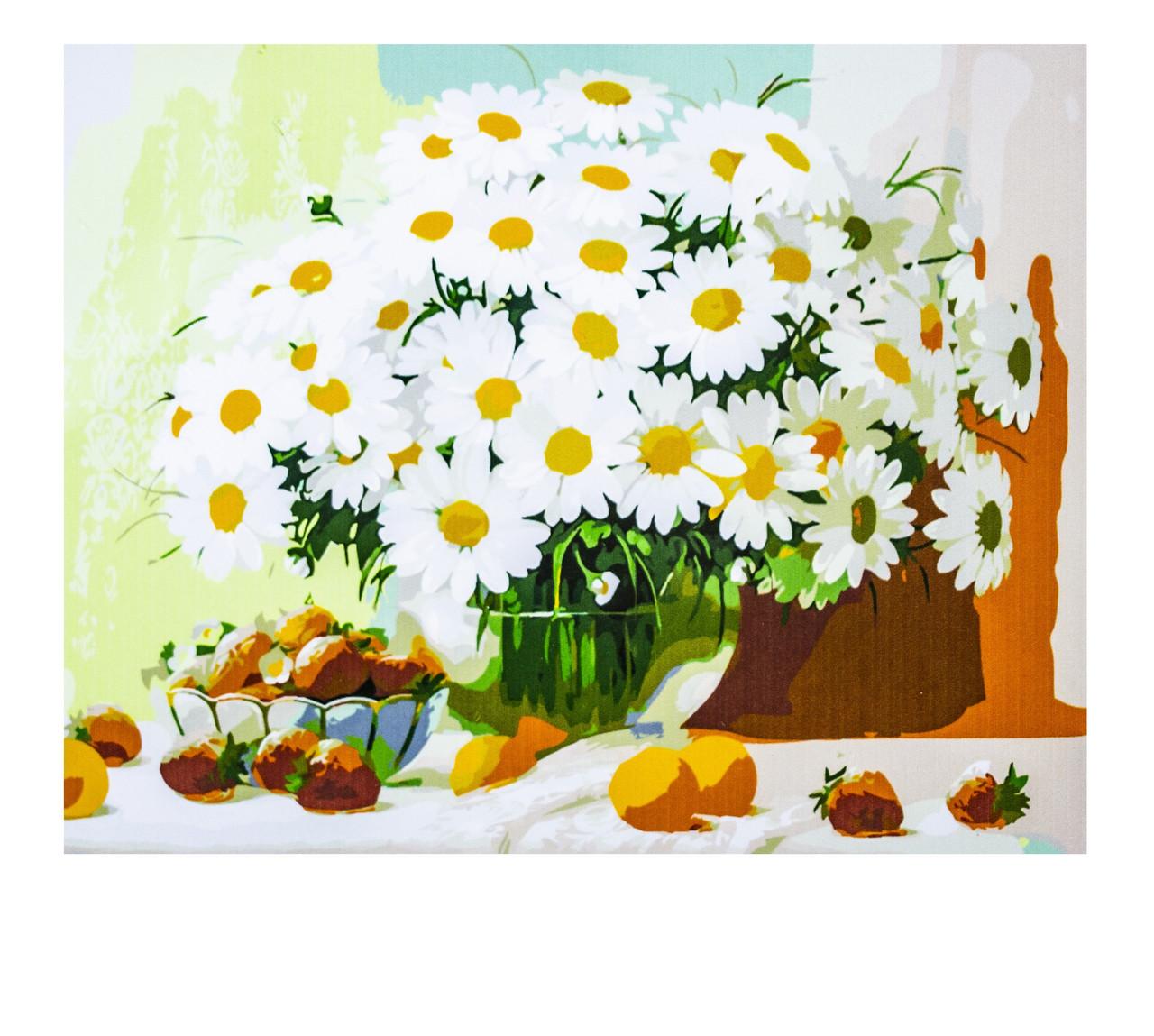 Картина по номерам Ромашки, размер 40х50