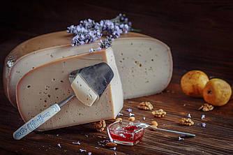 Сыр Гауда с цветами лаванды