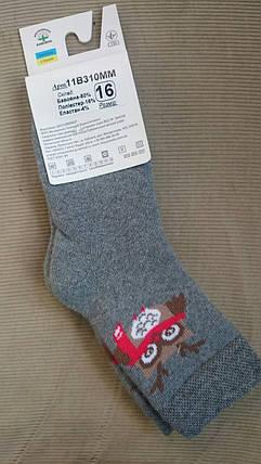 Шкарпетки дитячі махра р 12,14,16 (Африка), разные цвета, фото 2