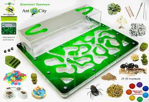 Муравьиные фермы, муравьиные колонии, корм для муравьев, аксессуары и декор