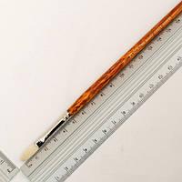 Кисть щетина Kolos Grace 2023FR овальная №2 длин. ручка (4823064902785)