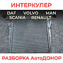 Интеркулер на DAF, MAN, RENAULT, VOLVO, SCANIA. Разборка АвтоДОНОР, фото 3