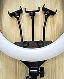 Кольцевая лампа 45 cм со штативом 65Вт, тремя держателями, кольцевой свет для визажиста, косметолога, фото 5