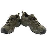 Тактические кроссовки на мембране Alligator олива, фото 3