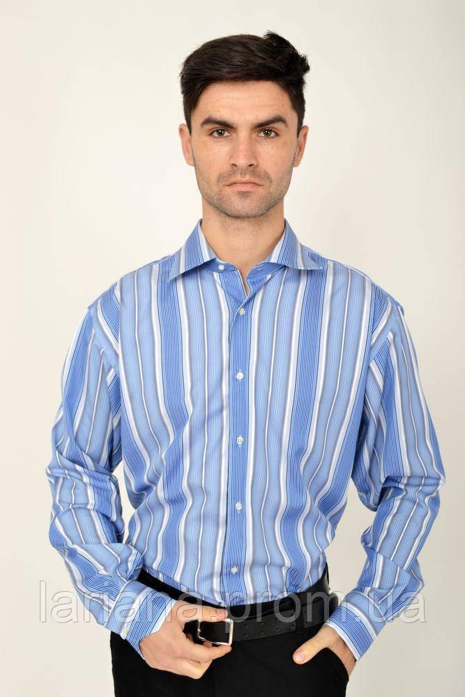 Рубашка 113RPia23 цвет Голубой