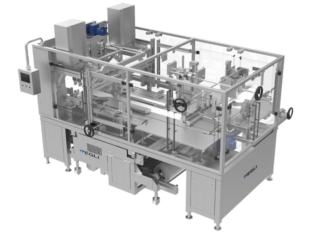 Автомат для мультиформатной упаковки Fasa EMF