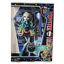 Лялька Monster High Лагуна Блю (Lagoona Blue) Нічне життя Монстер Хай Школа монстрів, фото 10