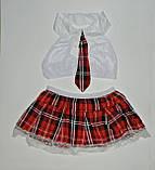 Эротический костюм учительница школьница сексуальное белье эротическое белье, фото 3