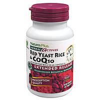 Красный Дрожжевой Рис + Коэнзим Q10, Herbal Actives, Natures Plus, 30 гелевых капсул