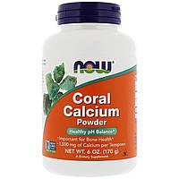 Кораловый Кальций, Coral Calcium, Now Foods, Порошок, 170 гр