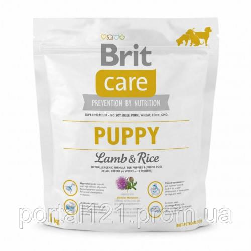 Сухой корм Brit Care Puppy Lamb & Rice, для щенков, с ягненком и рисом, 1 кг