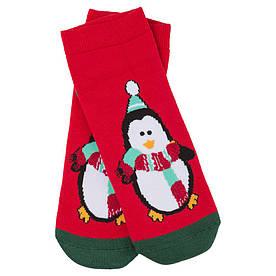 Носки женские новогодние, Penguin красный