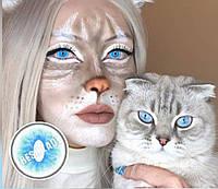 Цветные линзы кошачий глаз. Кошачий глаз. Линзы кошачий глаз. Голубые линзы. Яркие голубые линзы. Цветные линз