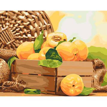Картина по номерам 40×50 см. Идейка (без коробки) Золотистый абрикос (КНО 5565)