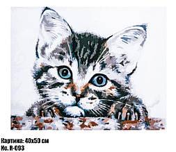 Картина по номерам Котёнок