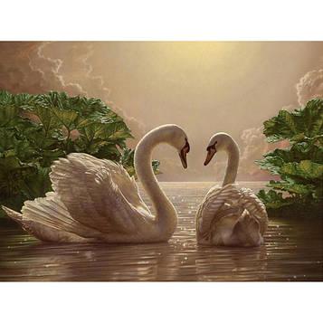 Картина по номерам 40×50 см. Идейка (без коробки) Пара лебедей (КНО 301)