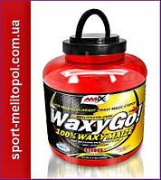 Amix Nutrition Waxy Go! 2000 г