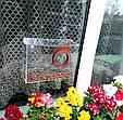 Набор кормушка для птиц на окно + семена для кормления птиц. Модель Фотоаппарат, фото 6
