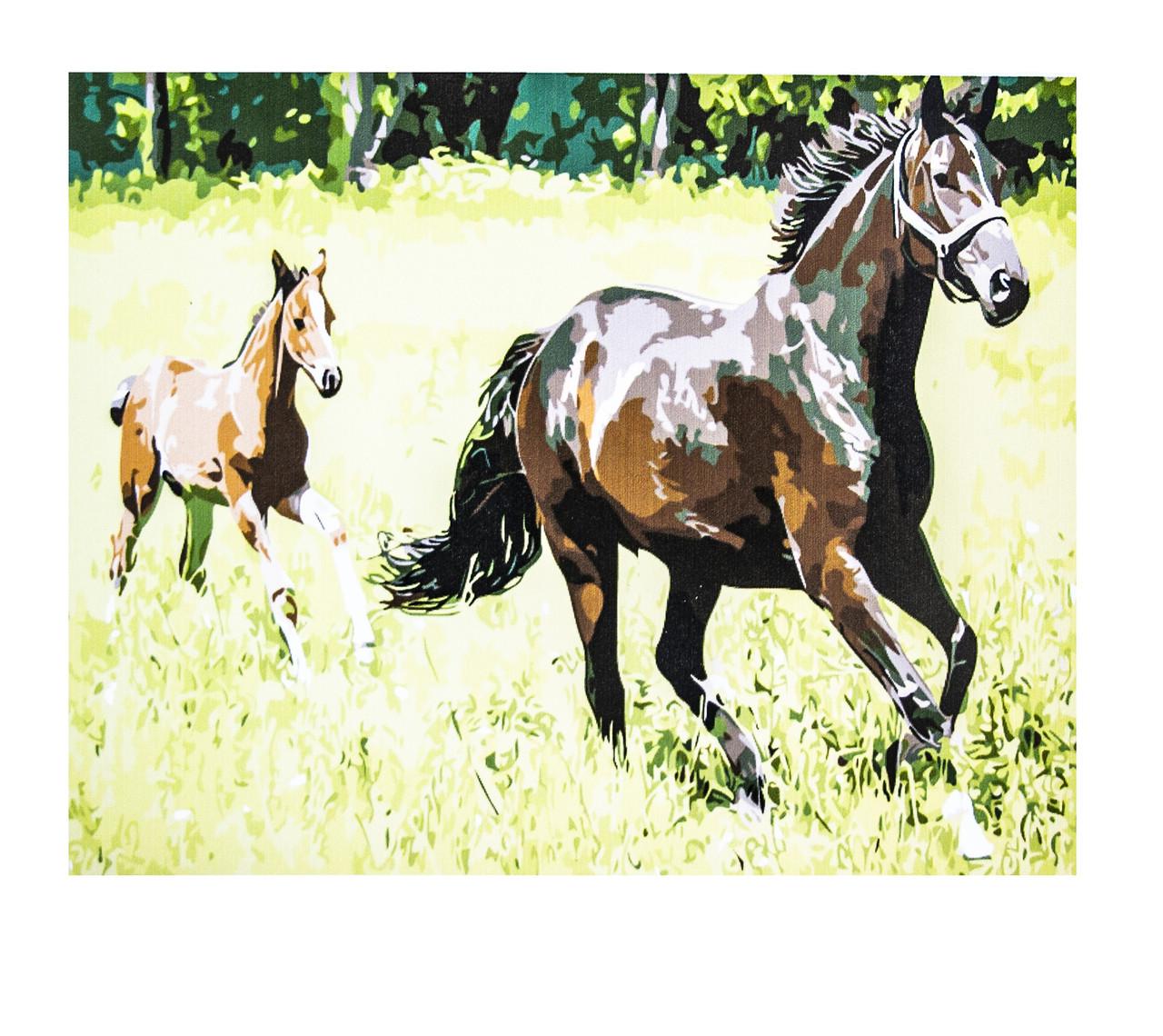 Картина по номерам Лошади, размер 60х75