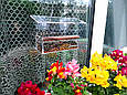 Кормушка для птиц с присосками на окно акриловая Лоджия, фото 7