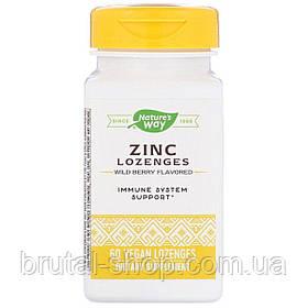 Цинк з вітаміном с і ехінацеєю, nature's Way ZINC Lozenges (60леденцов)